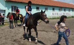 И още практически умения с конете