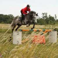 An exciting final equestrian event